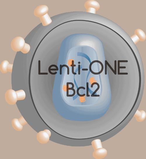 Lenti-ONE Bcl-2