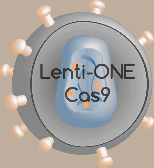 Lenti-ONE Cas9
