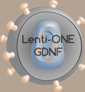 Lenti-ONE GDNF