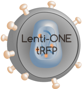 Lenti-ONE RFP