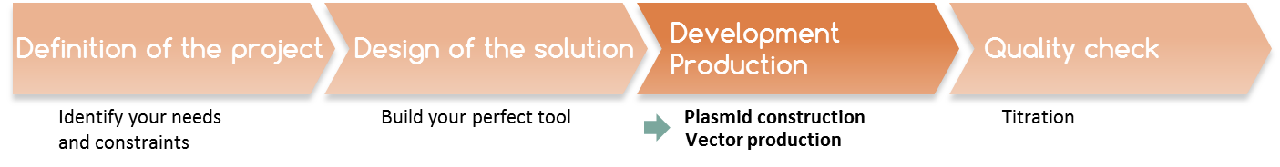 process development production