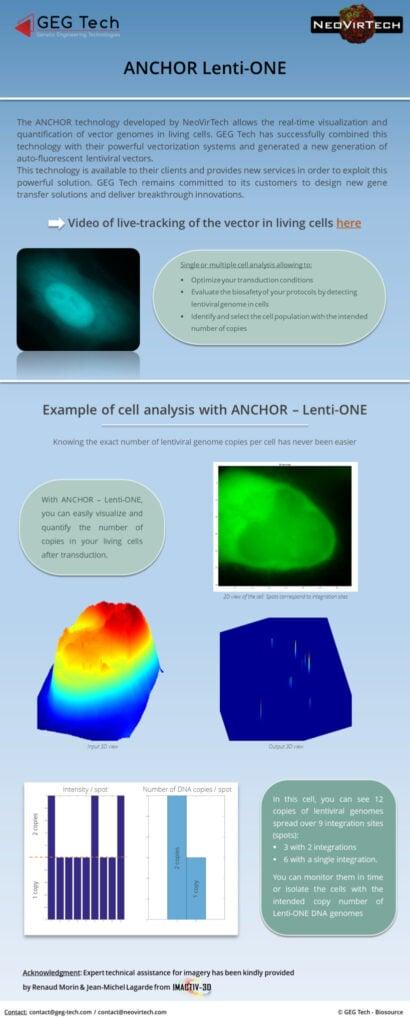 Anchor Technology -