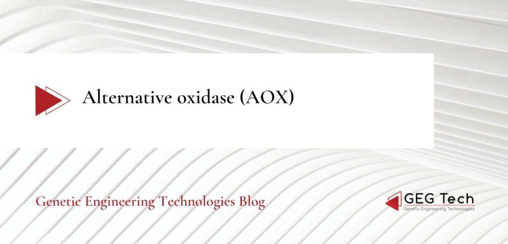 Alternative oxidase (AOX) - Blog