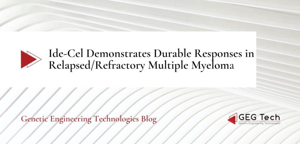 Ide-Cel Demonstrates Durable Responses in Relapsed/Refractory Multiple Myeloma - Blog